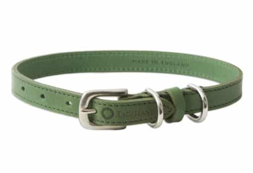 Italian leather pet collar - green