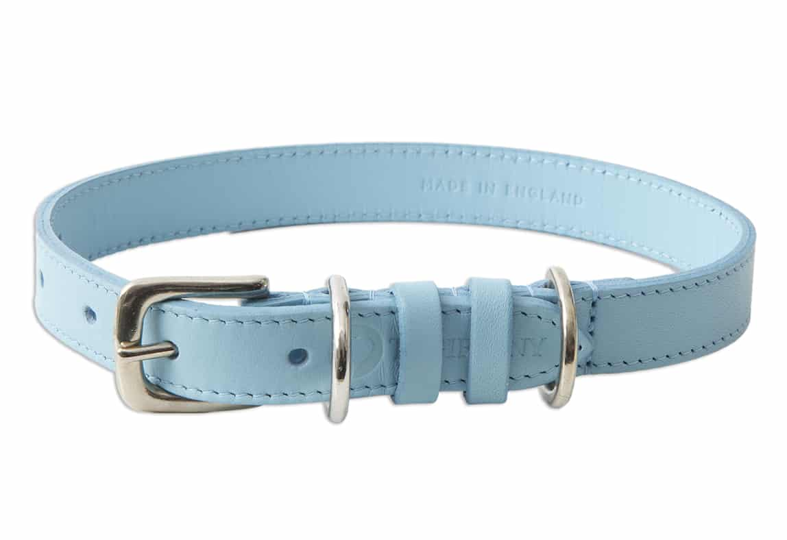 Blue Dog Collars Uk