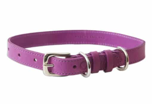 Italian leather pet collar - purple