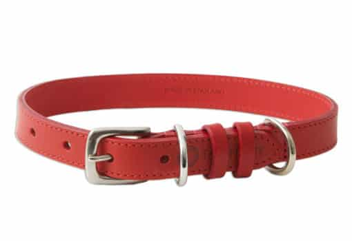 Italian leather pet collar - red