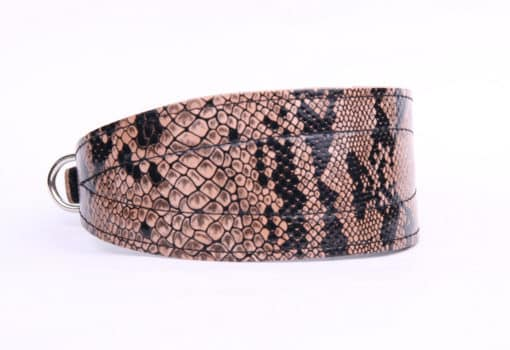 Greyhound Collar - Snake Effect