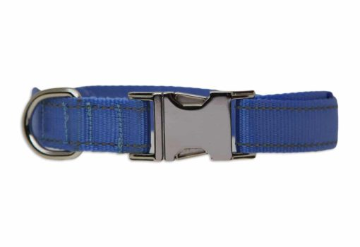 Tagiffany Activity Collar Light Blue