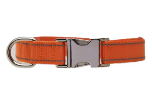 Tagiffany Activity Collar Orange